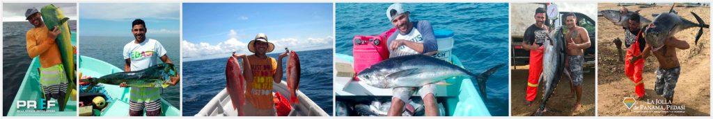 Fishing Panama Pedasi Tuna Coast